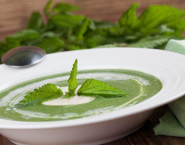 Krem supa od koprive – zdravlje u tanjiru