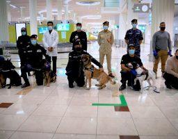 Tačnost 92 %: Na aerodromu u Dubaiju putnike testiraju K9 policijski psi