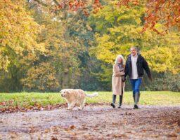 Samo 15 minuta šetnje sedmično za zdrav duh, tijelo i emocije